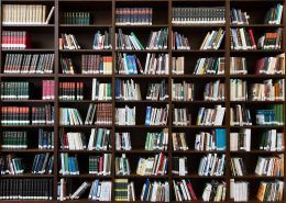 Bücherschrank als dekoratives Element im Wohnzimmer oder Flur