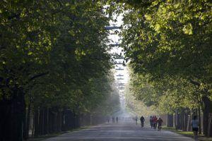 Parks und Garten